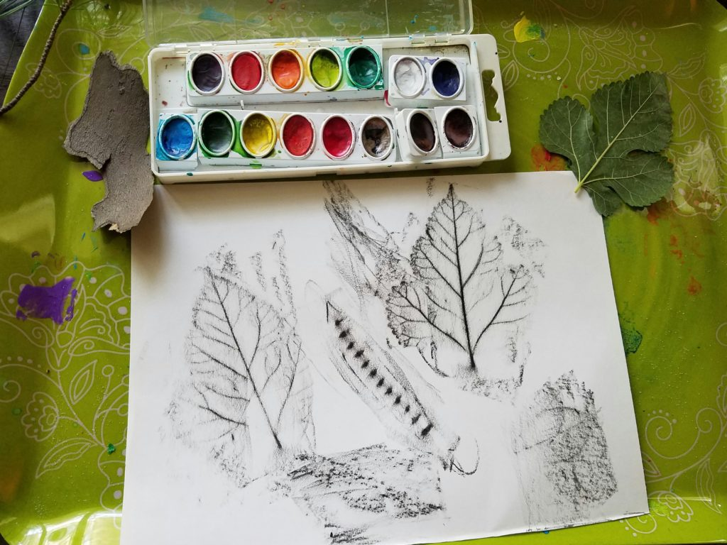 Remember your nature walk with a simple leaf rubbing